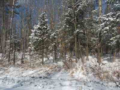 Ogema Residential Lots & Land For Sale: 40 Acres State Highway 102