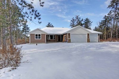 Mosinee Single Family Home For Sale: 201424 Dubay Drive