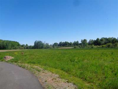 Stetsonville Residential Lots & Land For Sale: North Cherry Street