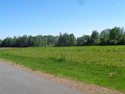 Stetsonville Residential Lots & Land For Sale: North Franklin Street