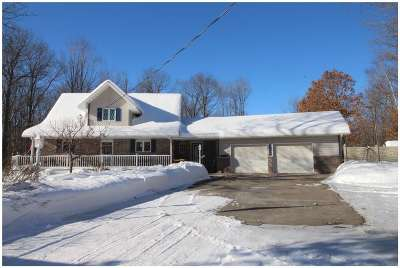 Mosinee Single Family Home For Sale: 215930 Damian Drive
