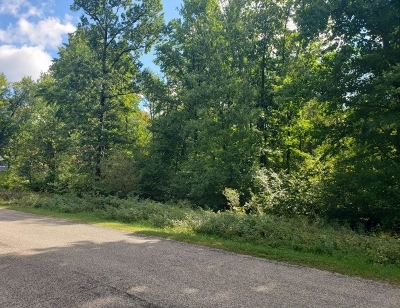 Stevens Point Residential Lots & Land For Sale: Lot 17 Timber Shores Drive