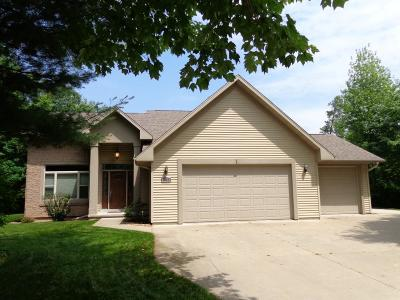 Stevens Point Single Family Home Active - With Offer: 4808 White Tail Drive
