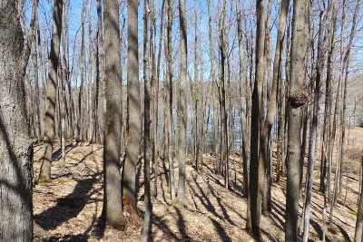 Medford Residential Lots & Land For Sale: Lot 7 Moraine Lane