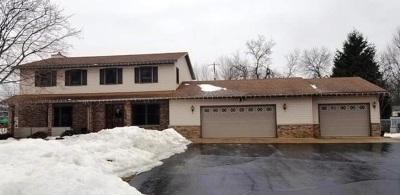 Stevens Point Single Family Home For Sale: 408 Sommers Street