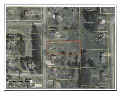 Stetsonville Residential Lots & Land For Sale: Powell Street