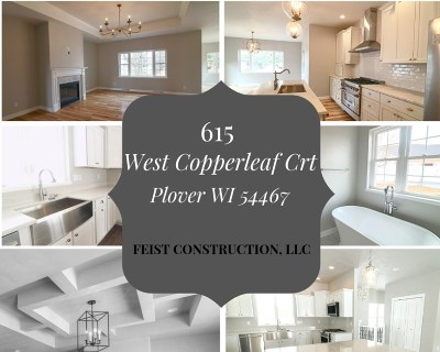Plover Single Family Home For Sale: 615 West Copperleaf Court