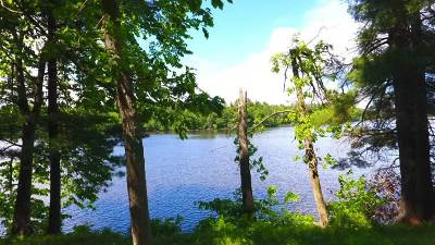 Wisconsin Rapids Residential Lots & Land For Sale: Lot 22 East Shore Trail