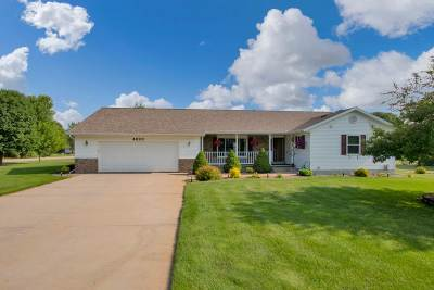 Plover Single Family Home For Sale: 4820 Still Meadow Lane