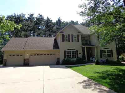 Plover Single Family Home For Sale: 2040 River Bend Road