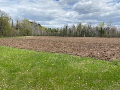 Rib Lake Residential Lots & Land For Sale: County Road M