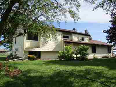 Stetsonville Single Family Home For Sale: 430 E County Road A
