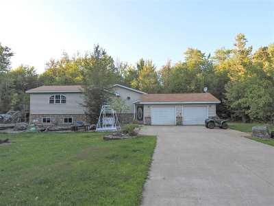 Stetsonville Single Family Home For Sale: W3210 Stetson Avenue