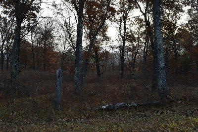 Menominee County, Marinette County Residential Lots & Land For Sale: Lt26 Johnson Falls Rd