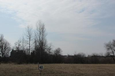 Oostburg Residential Lots & Land For Sale: Lt 48 Michigan Ave