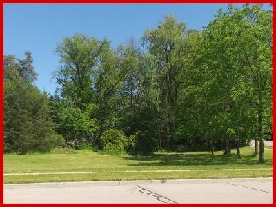 Lake Mills Residential Lots & Land For Sale: Lt3 Brewster Dr