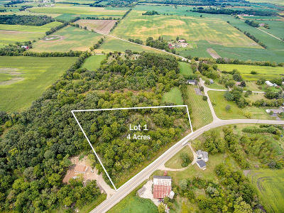Whitewater Residential Lots & Land For Sale: Lt1 County Road N