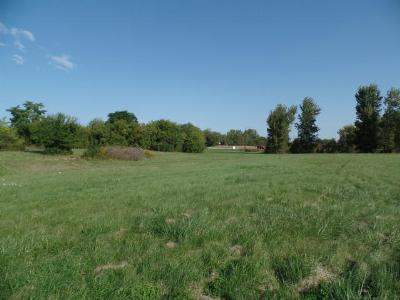 Whitewater Residential Lots & Land For Sale: 1461 W Main St