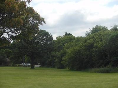 Fort Atkinson Residential Lots & Land For Sale: Lt1 N High St