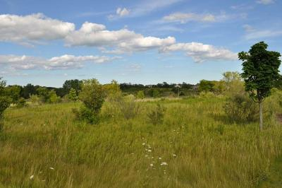 Mequon Residential Lots & Land Active Contingent With Offer: 14090 N Twin Oaks Ct #Lt7