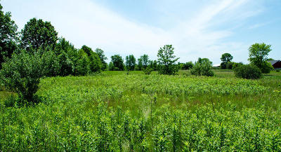 Grafton Residential Lots & Land For Sale: 1151 County C #Lt1