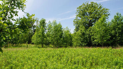 Grafton Residential Lots & Land For Sale: 1145 County C #Lt2