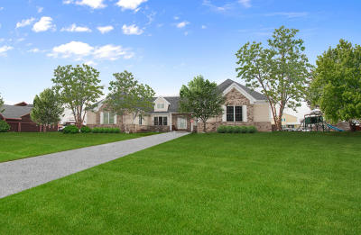 Kenosha County Single Family Home For Sale: 23735 111th St