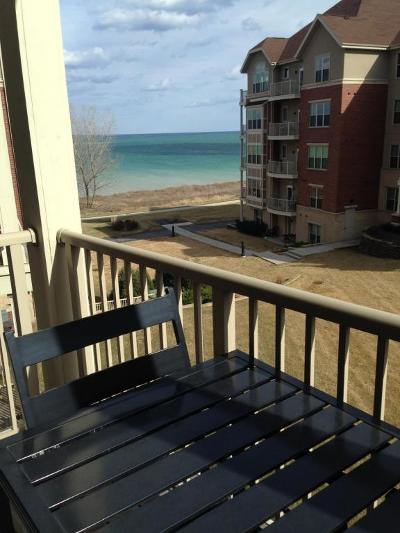Milwaukee County Condo/Townhouse For Sale: 4120 S Lake Dr #361