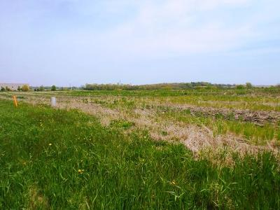 Whitewater Residential Lots & Land For Sale: Lt8b Prospect Dr