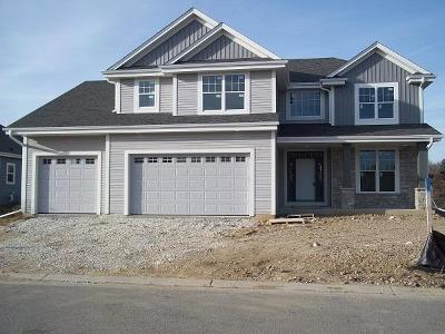 Single Family Home Active Contingent With Offer: 21696 N Weather Edge Cir