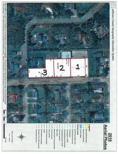 Residential Lots & Land For Sale: Lt3 Wilson Ave