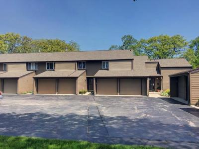 Kenosha County Condo/Townhouse Active Contingent With Offer: 141 S Lakeshore Dr #E6