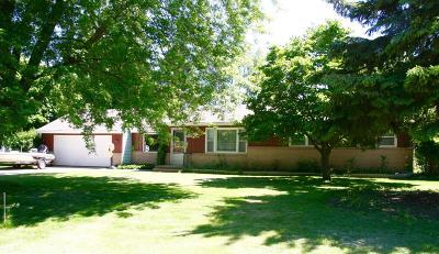 Menomonee Falls Single Family Home For Sale: N62w15325 Red Cloud Ct
