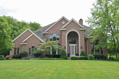 Brookfield Single Family Home For Sale: 19545 Dorchester Dr