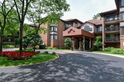 Glendale Condo/Townhouse Active Contingent With Offer: 1600 Green Tree Rd #B111