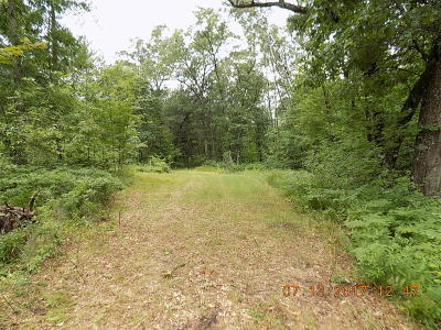 Pound Residential Lots & Land For Sale: 14407 Pickerel Rd