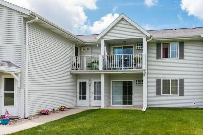 West Bend Condo/Townhouse Active Contingent With Offer: 254 Minz Park Cir #4