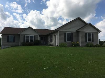 Fort Atkinson Single Family Home Active Contingent With Offer: N817 Twin Knolls Dr