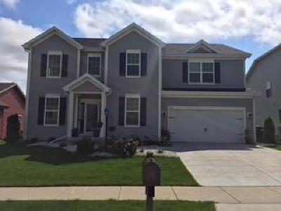 Waukesha Single Family Home For Sale: 739 Timber Ridge Dr.