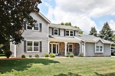 Waukesha Single Family Home For Sale: 224 S Comanche Lane