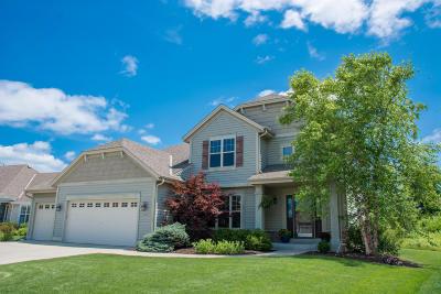 Racine Single Family Home For Sale: 3253 Emmertsen Rd
