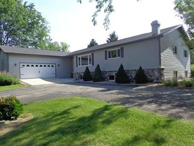 Whitewater Single Family Home For Sale: N9602 Warner Rd