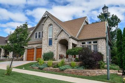 Milwaukee Single Family Home For Sale: 4234 W Willow Way