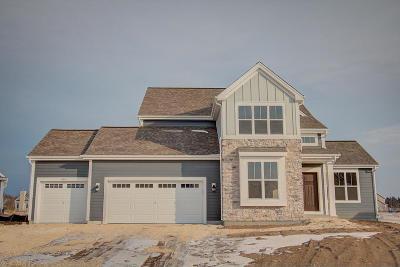Ozaukee County Single Family Home For Sale: 10890 N Spartan Cir
