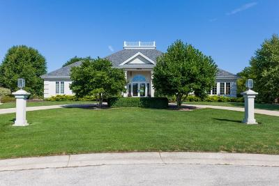 Brookfield Single Family Home For Sale: 960 Wild Rose Ct