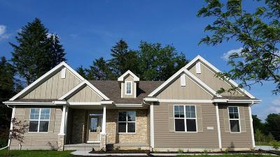 Ozaukee County Single Family Home For Sale: 10750 N Firefly Ct