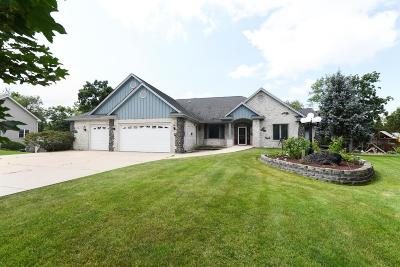 Racine County Single Family Home For Sale: 117 Accipiter Ct