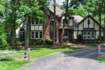 Brookfield Single Family Home For Sale: 19630 W North Ave