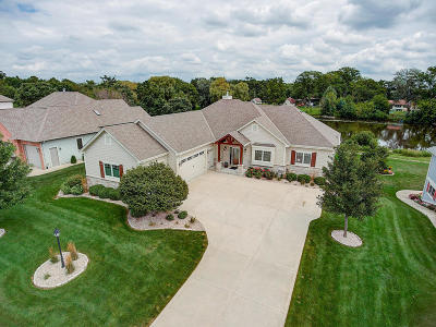Racine County Single Family Home For Sale: 856 River Ridge Cir