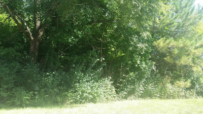 Pleasant Prairie WI Residential Lots & Land For Sale: $35,000